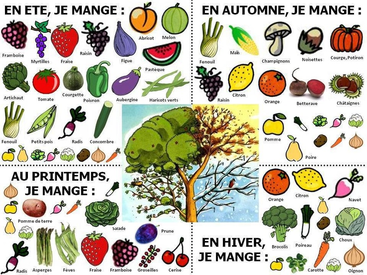 Recursos externos de idiomas vocabulario de idiomas for Verduras francesas